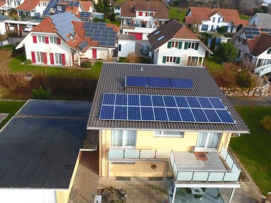 Vogel - image 3ogel_Kunz_Solartech_02 on https://kunz-solartech.ch