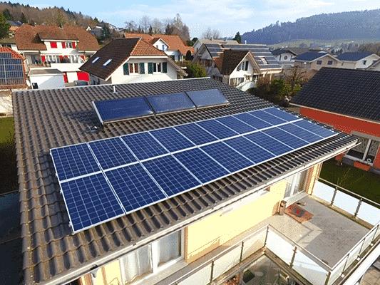Vogel - image Vogel_Kunz_Solartech_01 on https://kunz-solartech.ch