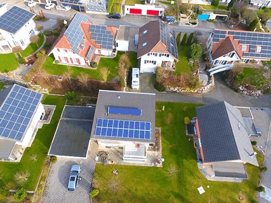 Vogel - image Vogel_Kunz_Solartech_02 on https://kunz-solartech.ch
